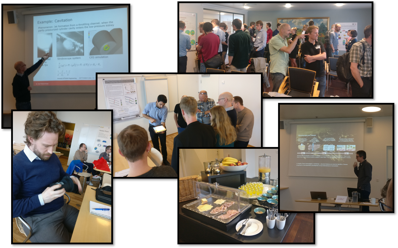 Multiphysics Simulation Network Day